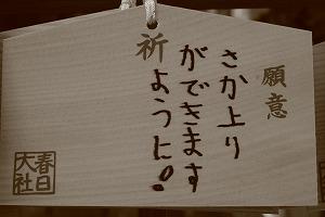 奈良 大阪 和歌山 018