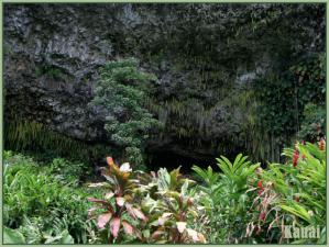 Kauai2e.jpg