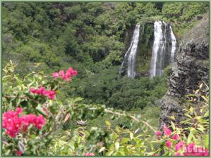 Kauai2g.jpg