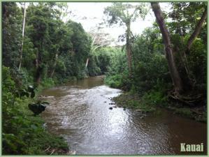 Kauai2l.jpg