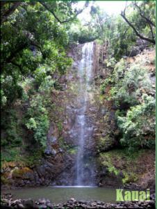 Kauai2n.jpg