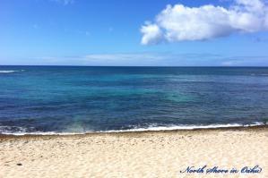 Oahu-NShore07.jpg