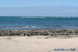 Oahu-NShore11.jpg