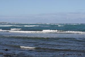 Oahu-NShore12.jpg