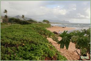 kauai02.jpg