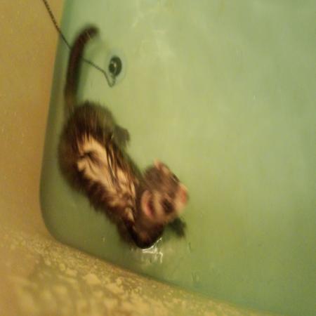 繝斐・_convert_20120510185520ピー風呂