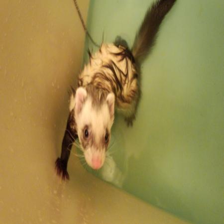 繝√Ι繧ウ_convert_20120510185327チョコ風呂