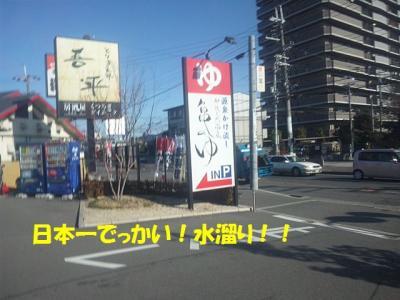 DVC00015_20120104205253.jpg