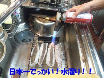 DVC00026_20121229044801.jpg