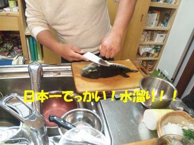 DVC00031_20121229044802.jpg