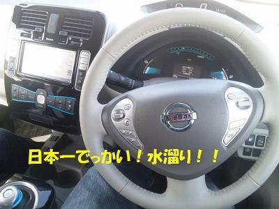 DVC00031_20130211124538.jpg