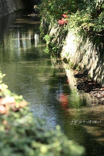 写真00121(1)