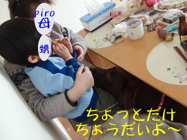 CIMG2649.jpg