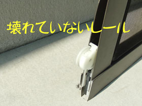 CIMG6493.jpg