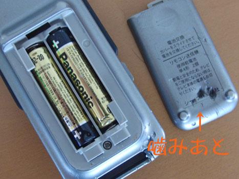 CIMG8065.jpg