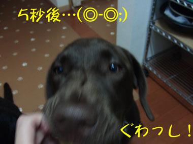 CIMG8715.jpg