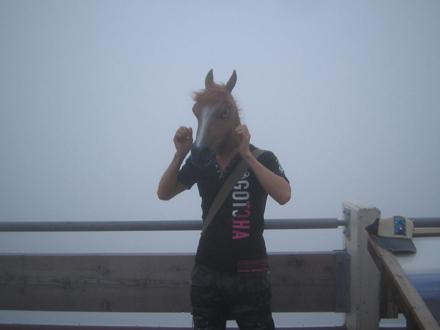 お馴染みの馬w