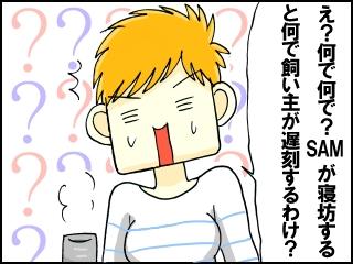 003_20121212220817.jpg