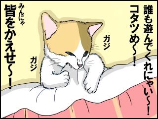 006_20121105201403.jpg