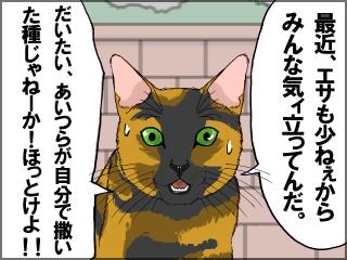 045_20120619191145.jpg
