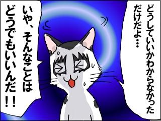 048_20120620200850.jpg
