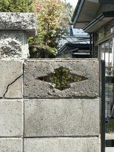 back-Matsukawa