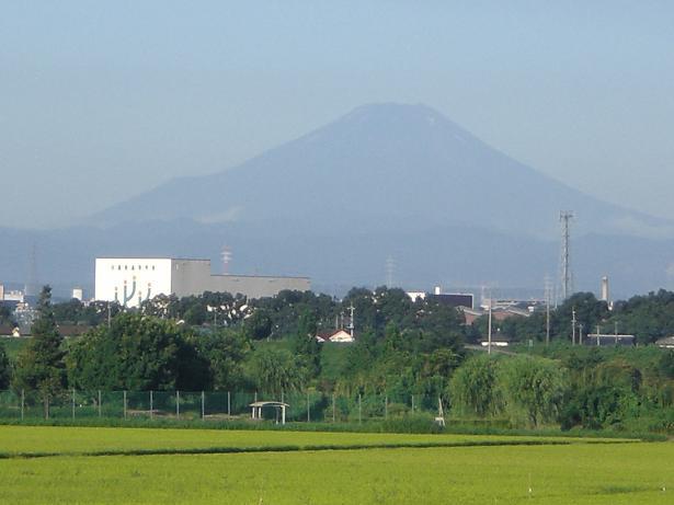 10.8.5土手から冨士山 (7)