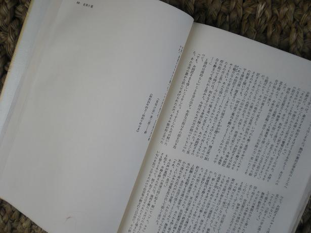 10.8.28ブログ用 夜明け前(11)