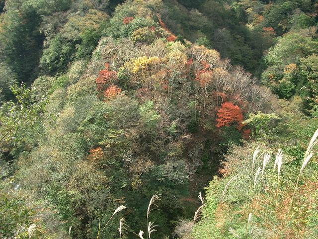 04.10.23.24雲取山 167
