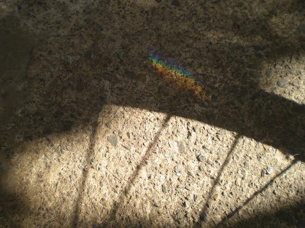 10.9.26ブログ用、虹とドナーカード (12)