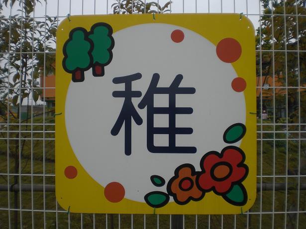 10.10.15ブログ用幼稚園 (7)