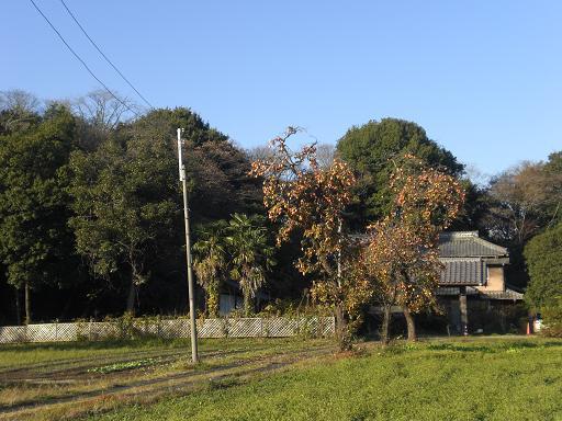 10.12.3サイクリング秋の風景 (79)