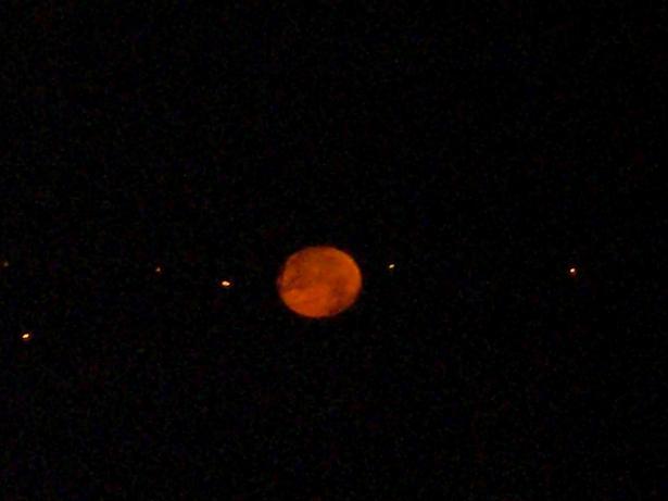 11.1.19ブログ用夜明けの月 (42)