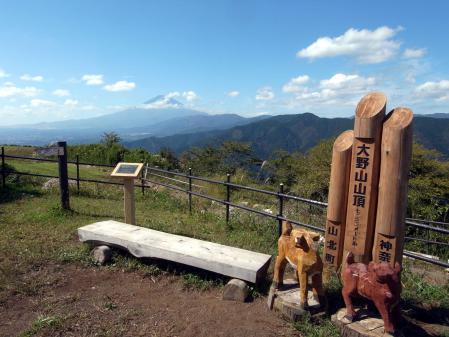 大野山山頂より富士山