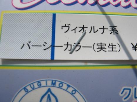 バーシーカラー・ツートン (2)
