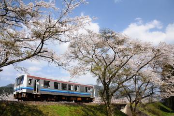 春爛漫の三江線(1)