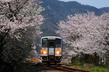 春爛漫の三江線(2)