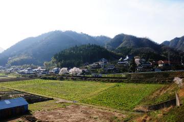 春爛漫の三江線(21)