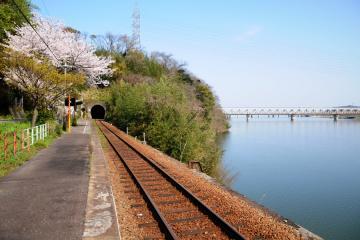春爛漫の三江線(33)
