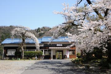 春爛漫の三江線(42)