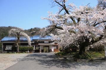 春爛漫の三江線(43)