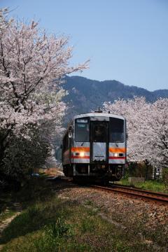 春爛漫の三江線(68)