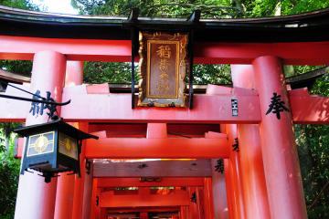 京都にて(3)
