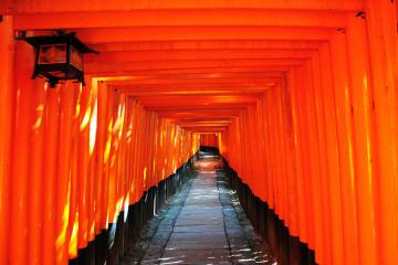 京都にて(8)