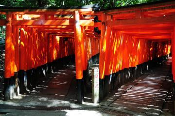 京都にて(9)
