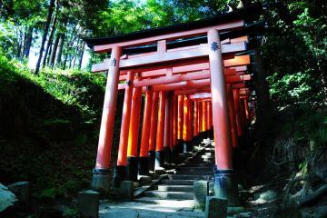 京都にて(12)