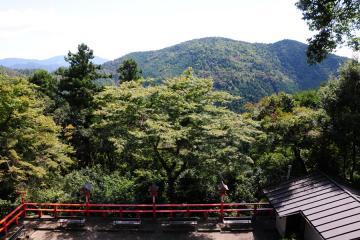 京都にて(29)