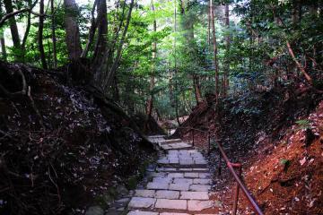 京都にて(38)