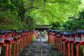 京都にて(58)