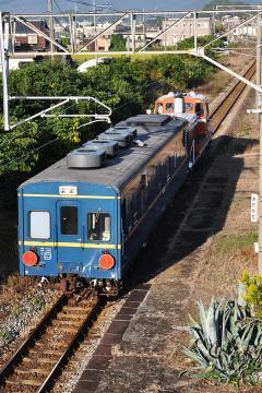 マヤ201010(1)